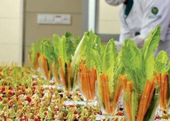 İzmir Catering