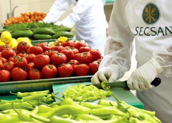İzmir Yemek Şirketleri